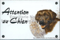 Enamel sign with dog's head (10x15cm) chocolate labrador