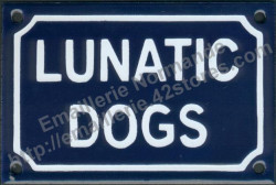 French enamel sign for dog (10x15cm) Lunatic dogs